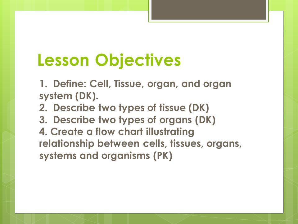1. Define: Cell, Tissue, organ, and organ system (DK). 2. Describe two types of tissue (DK) 3. Describe two types of organs (DK) 4. Create a flow char