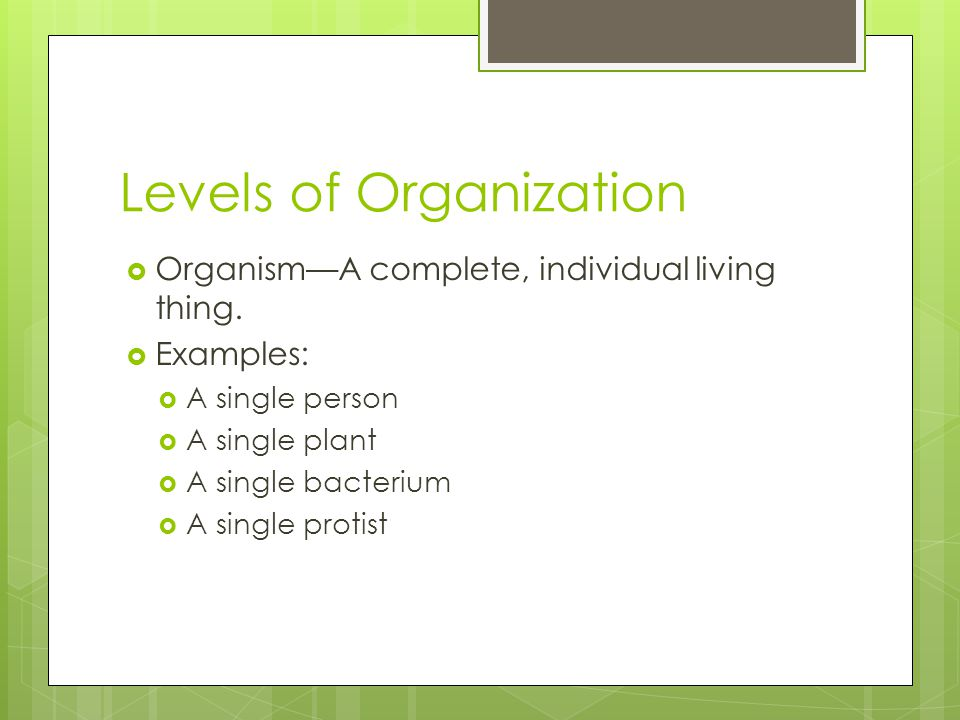 Levels of Organization  Organism—A complete, individual living thing.  Examples:  A single person  A single plant  A single bacterium  A single