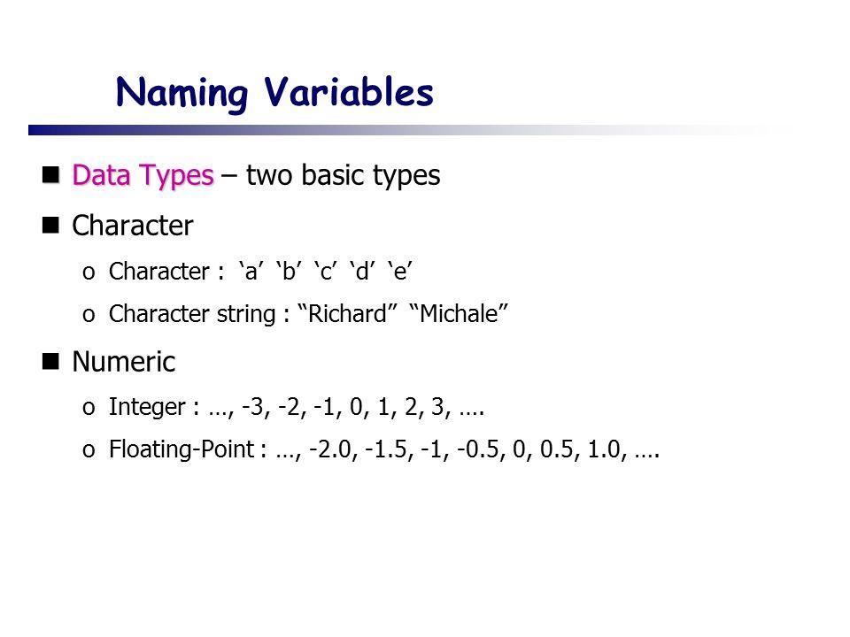 Naming Variables Data Types Data Types – two basic types Character oCharacter : 'a' 'b' 'c' 'd' 'e' oCharacter string : Richard Michale Numeric oInteger : …, -3, -2, -1, 0, 1, 2, 3, ….