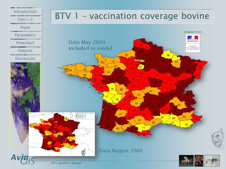 BTV spread in Europe BTV 1 – vaccination coverage bovine Adapted from: Data May 2009 included in model Data August 2009 Introduction Gen 1-2 Input Par