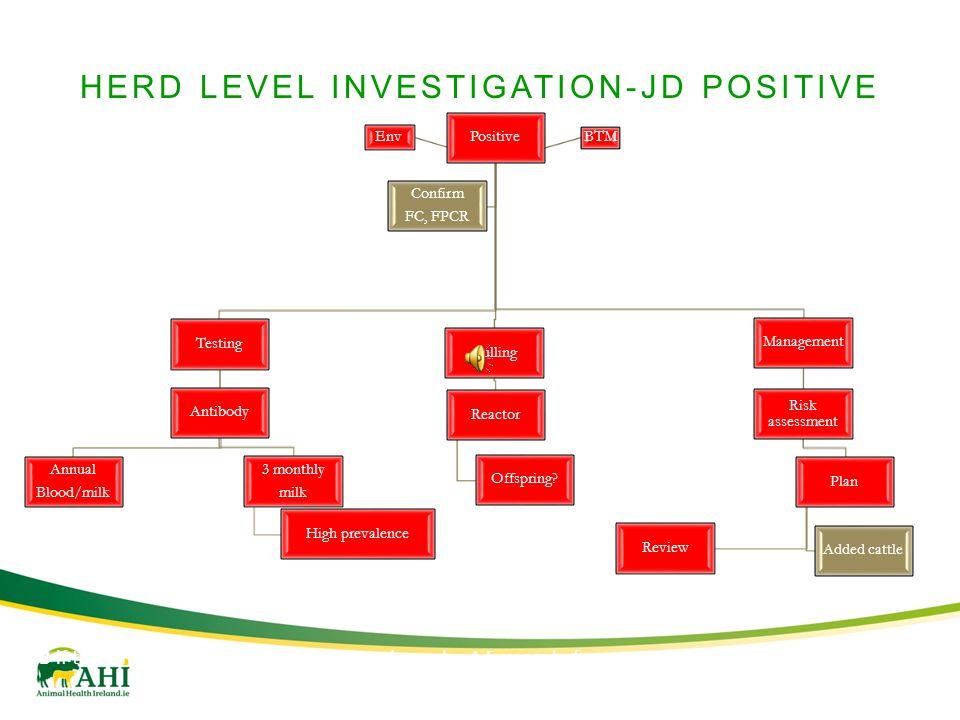 HERD LEVEL INVESTIGATION-JD POSITIVE Positive Testing Antibody Annual Blood/milk 3 monthly milk High prevalence Culling Reactor Offspring? Management