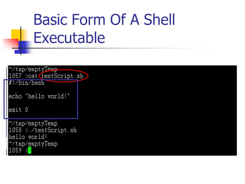 Basic Form Of A Shell Executable