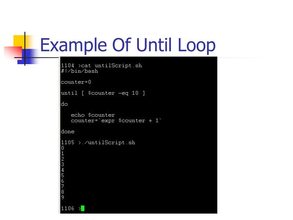 Example Of Until Loop