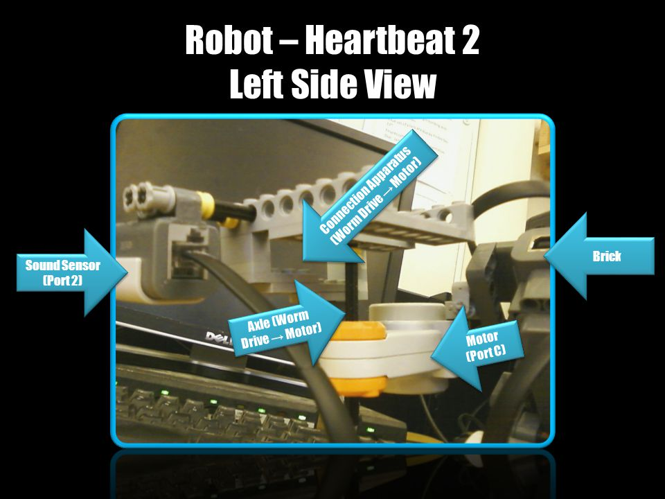 Robot – Heartbeat 2 Left Side View Motor (Port C) Motor (Port C) Sound Sensor (Port 2) Connection Apparatus (Worm Drive → Motor) Connection Apparatus (Worm Drive → Motor) Axle (Worm Drive → Motor) Brick