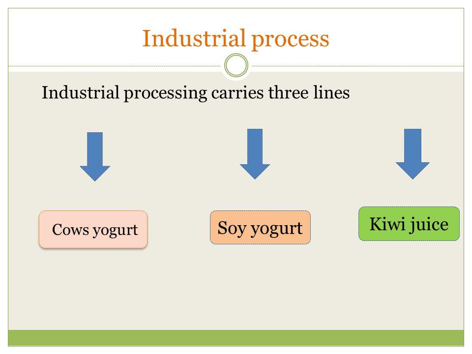 Industrial process Industrial processing carries three lines Cows yogurt Soy yogurt Kiwi juice