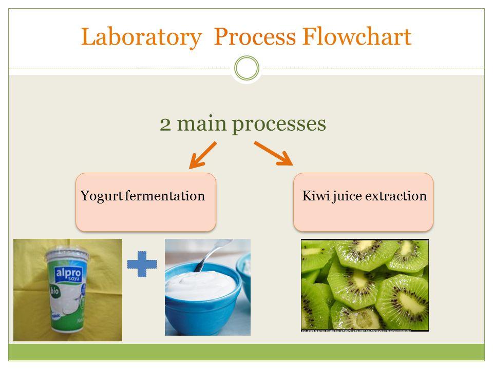 2 main processes Kiwi juice extraction Yogurt fermentation