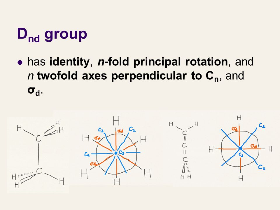 D nd group has identity, n-fold principal rotation, and n twofold axes perpendicular to C n, and σ d.