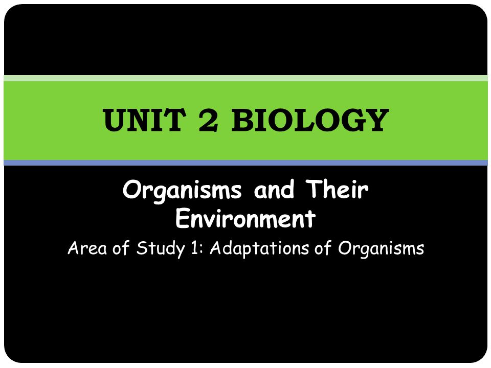 Organisms and Their Environment Area of Study 1: Adaptations of Organisms UNIT 2 BIOLOGY