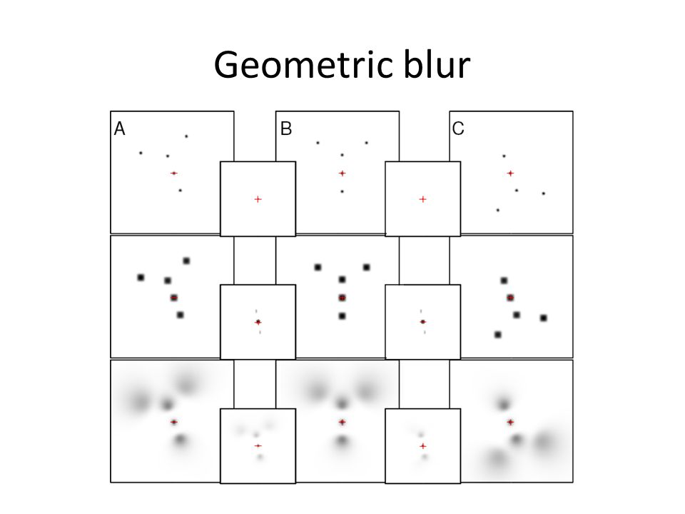 Learning Globally-Consistent Local Distance Functions for Shape-Based Image Retrieval and Classification