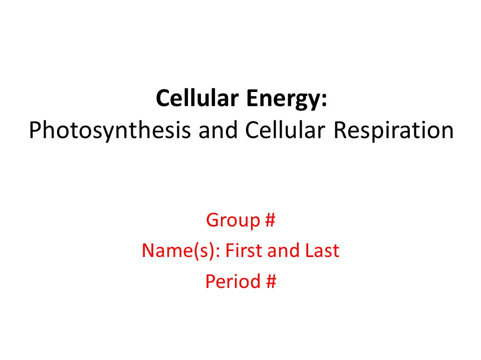 Cellular Energy: Photosynthesis and Cellular Respiration Group # Name(s): First and Last Period #