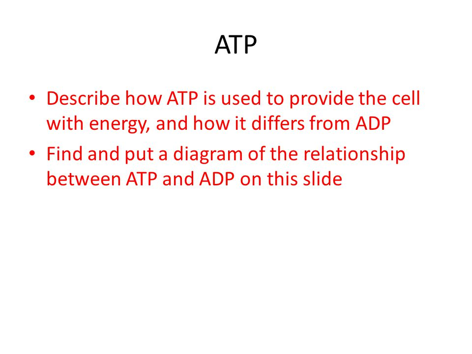 ATP Describe how ATP is used to provide the cell with energy, and how it differs from ADP Find and put a diagram of the relationship between ATP and ADP on this slide