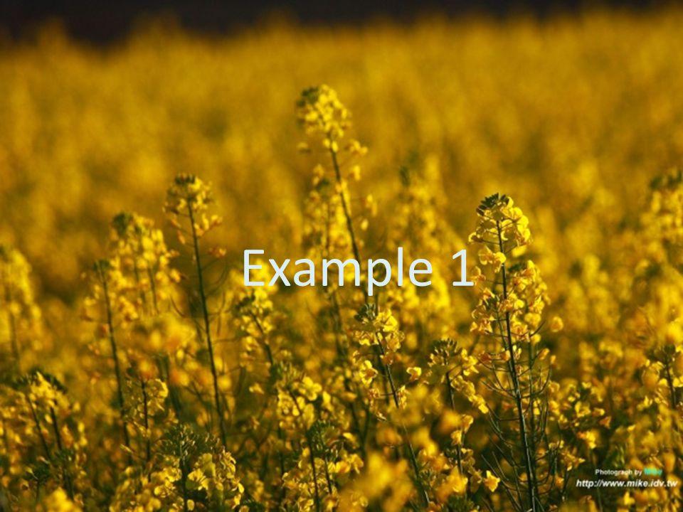 5 Example 1