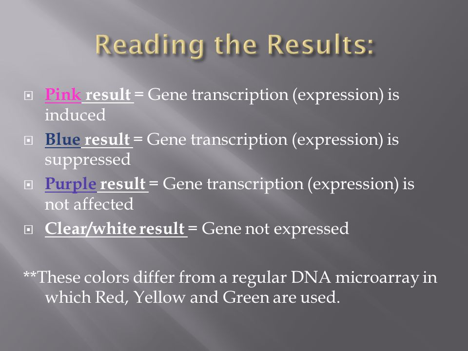 Pink result = Gene transcription (expression) is induced  Blue result = Gene transcription (expression) is suppressed  Purple result = Gene transcription (expression) is not affected  Clear/white result = Gene not expressed **These colors differ from a regular DNA microarray in which Red, Yellow and Green are used.