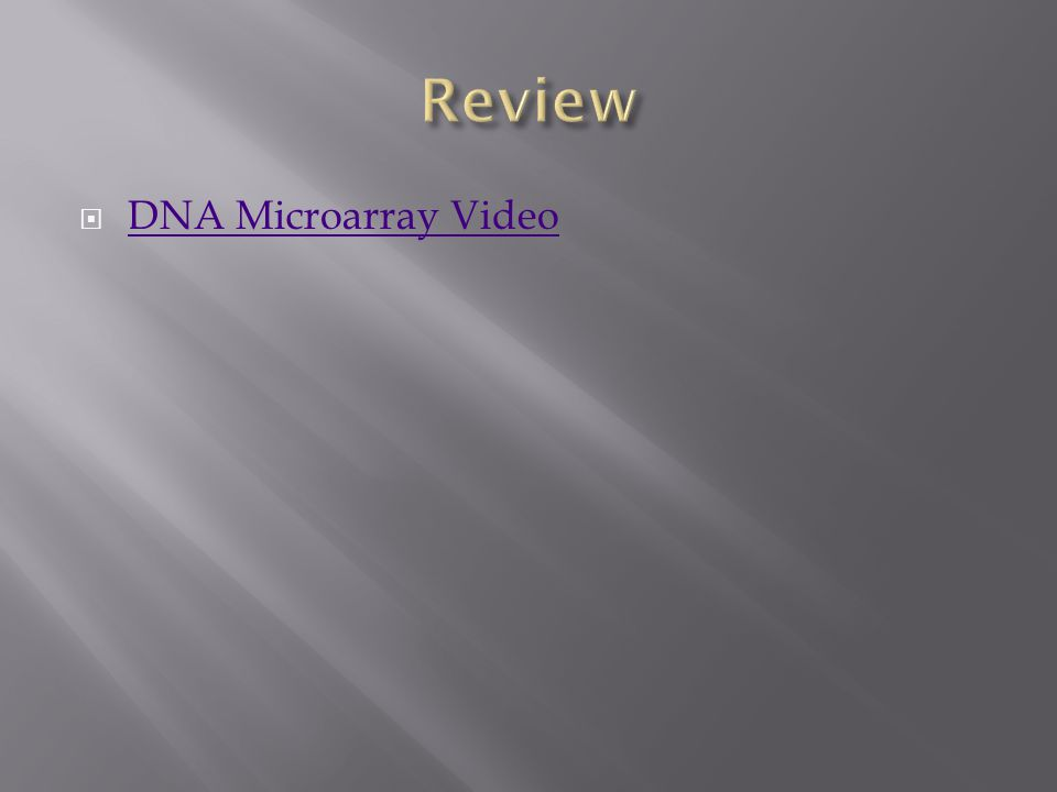  DNA Microarray Video DNA Microarray Video