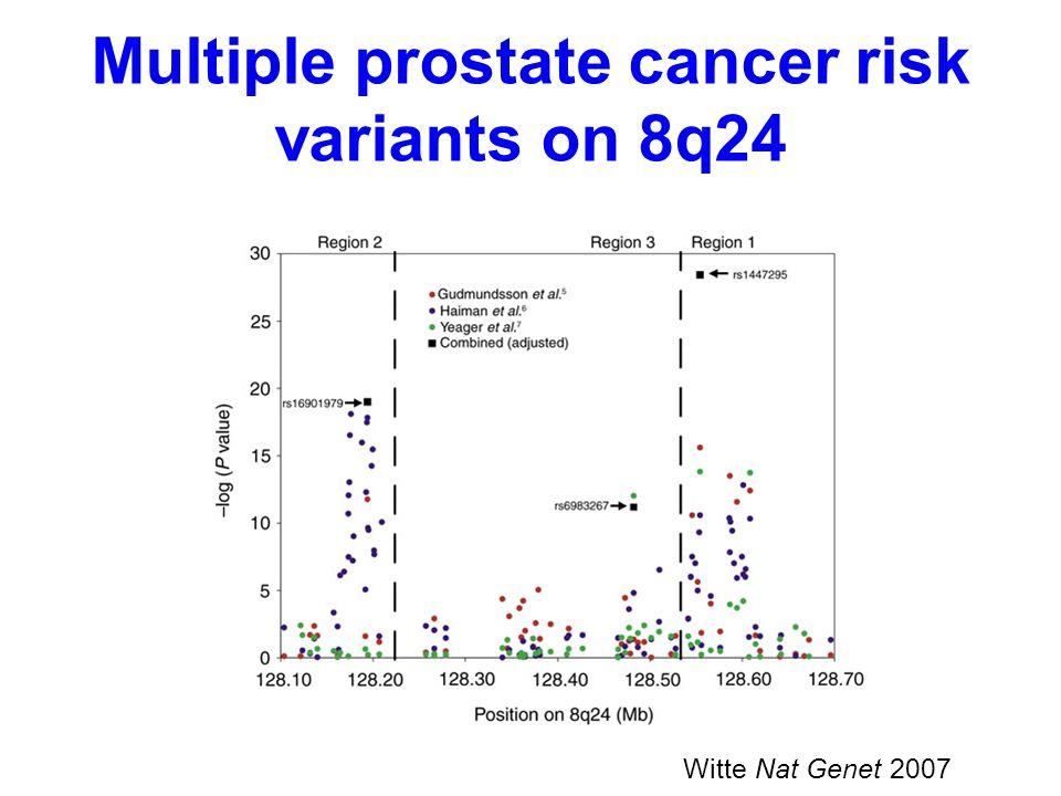 Multiple prostate cancer risk variants on 8q24 Witte Nat Genet 2007