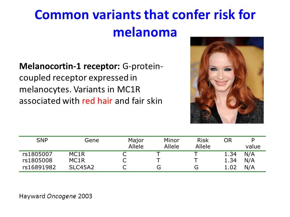 Common variants that confer risk for melanoma Hayward Oncogene 2003 Melanocortin-1 receptor: G-protein- coupled receptor expressed in melanocytes.