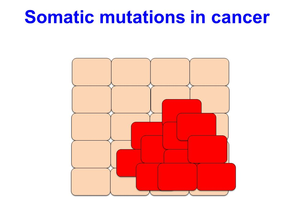 Somatic mutations in cancer