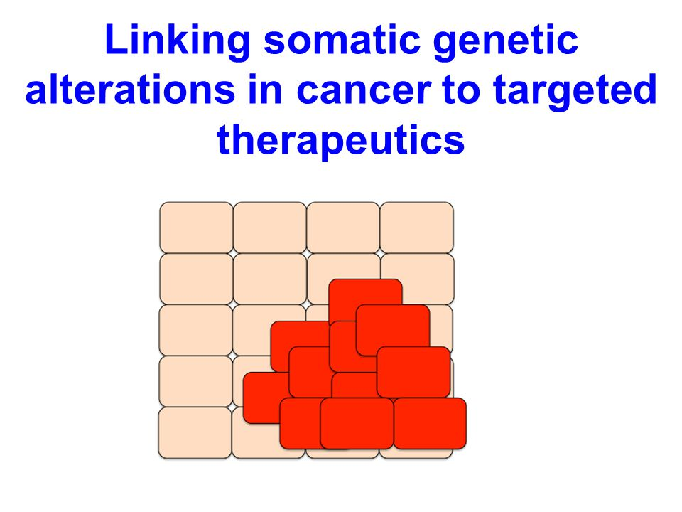 Linking somatic genetic alterations in cancer to targeted therapeutics