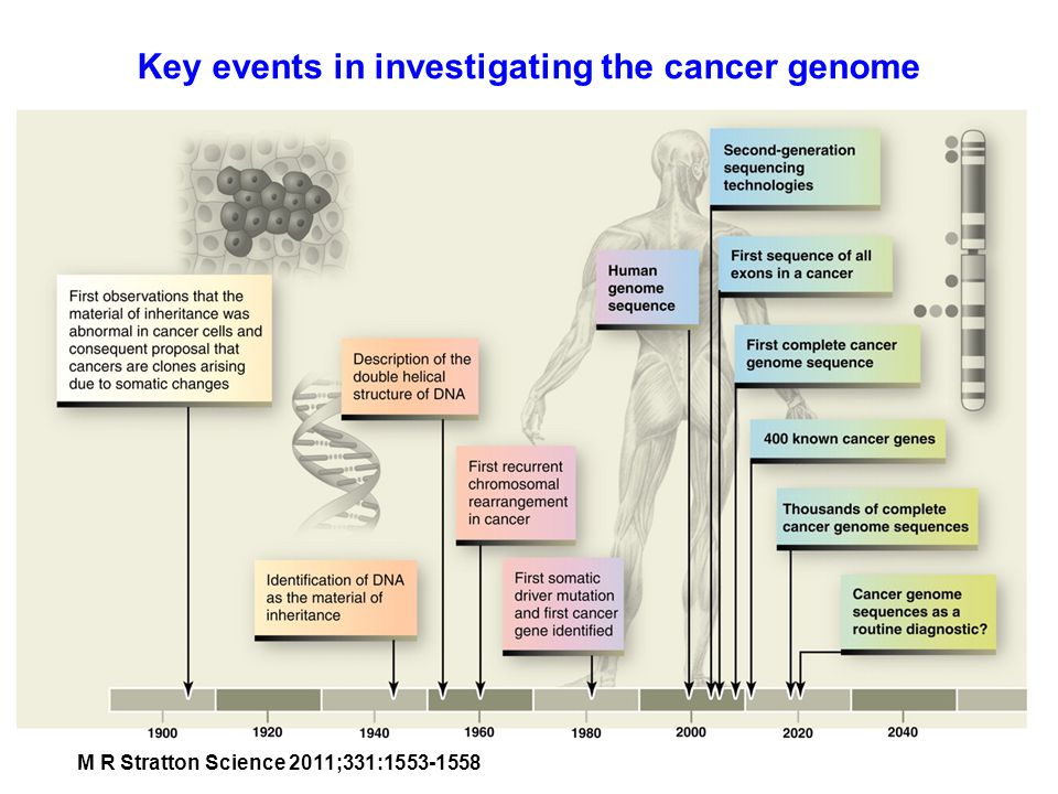 Key events in investigating the cancer genome M R Stratton Science 2011;331:1553-1558