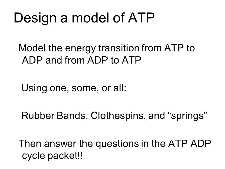 Design a model of ATP Model the energy transition from ATP to ADP and from ADP to ATP Using one, some, or all: Rubber Bands, Clothespins, and springs Then answer the questions in the ATP ADP cycle packet!!