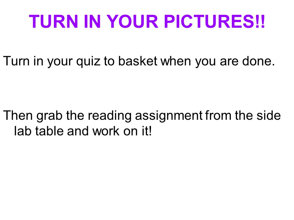 TURN IN YOUR PICTURES!! Turn in your quiz to basket when you are done. Then grab the reading assignment from the side lab table and work on it!