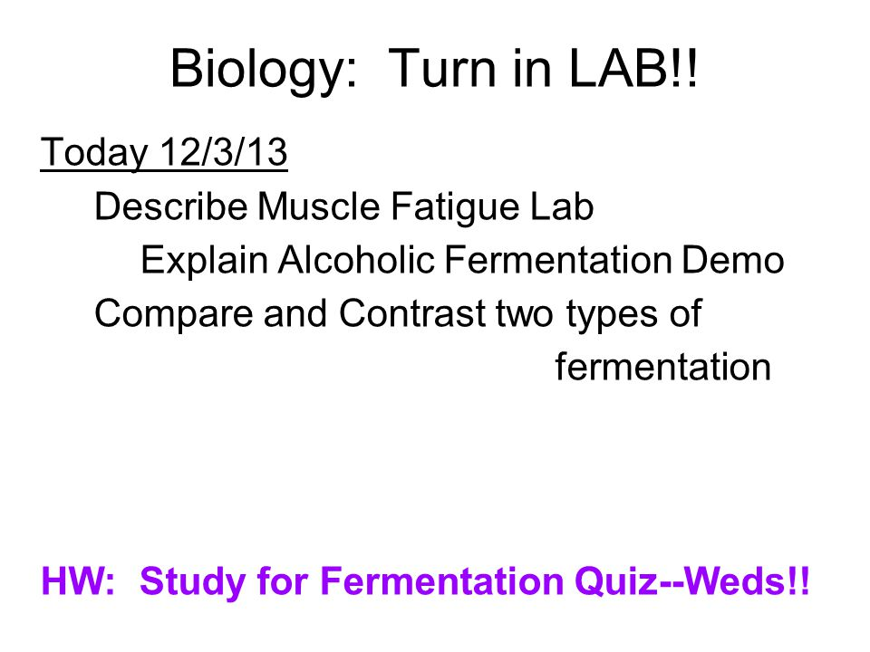 Biology: Turn in LAB!! Today 12/3/13 Describe Muscle Fatigue Lab Explain Alcoholic Fermentation Demo Compare and Contrast two types of fermentation HW