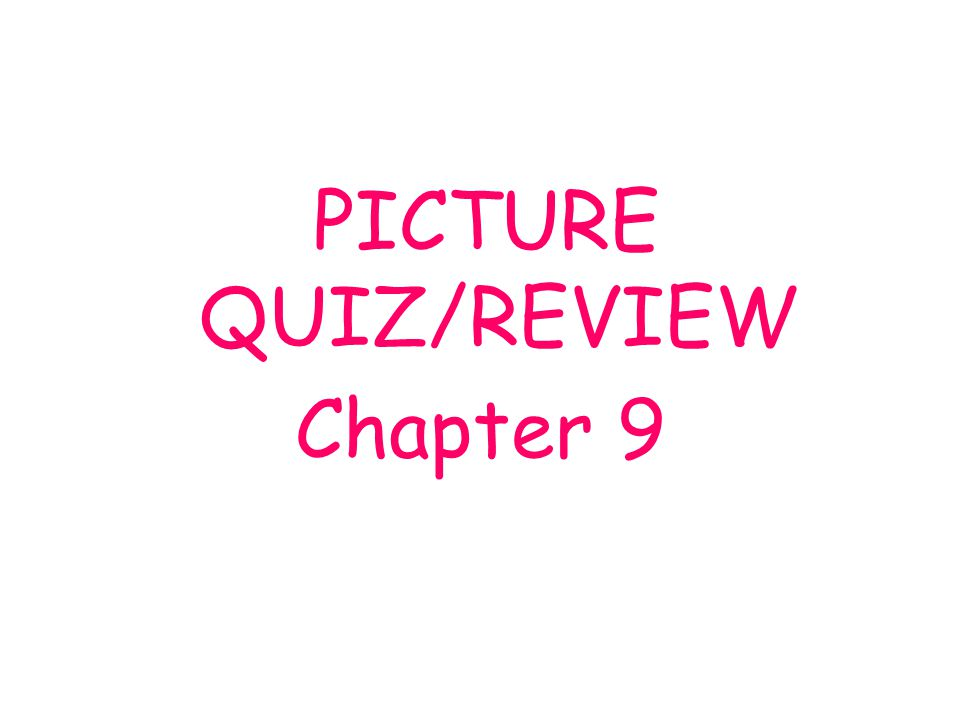 PICTURE QUIZ/REVIEW Chapter 9