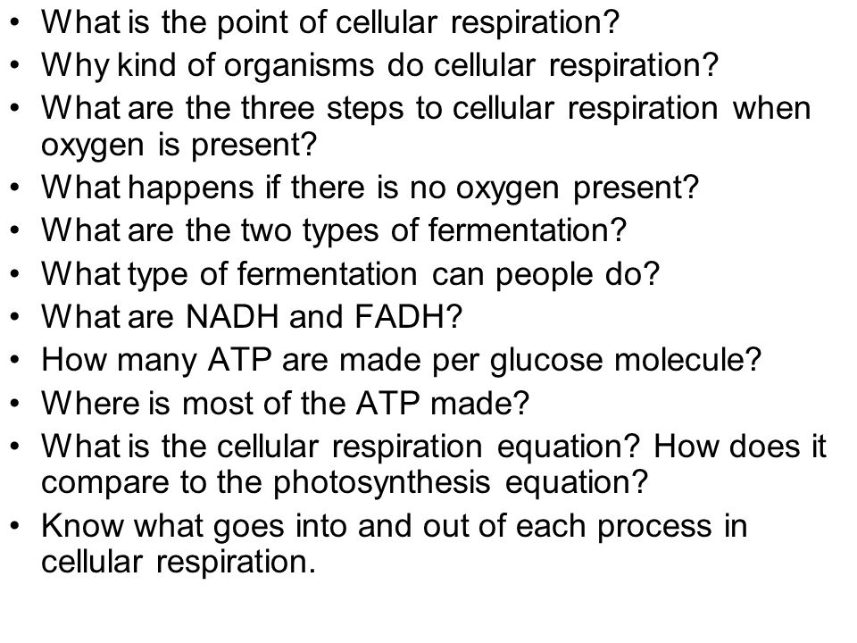 What is the point of cellular respiration. Why kind of organisms do cellular respiration.