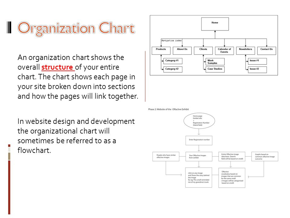 An organization chart shows the overall structure of your entire chart. The chart shows each page in your site broken down into sections and how the p
