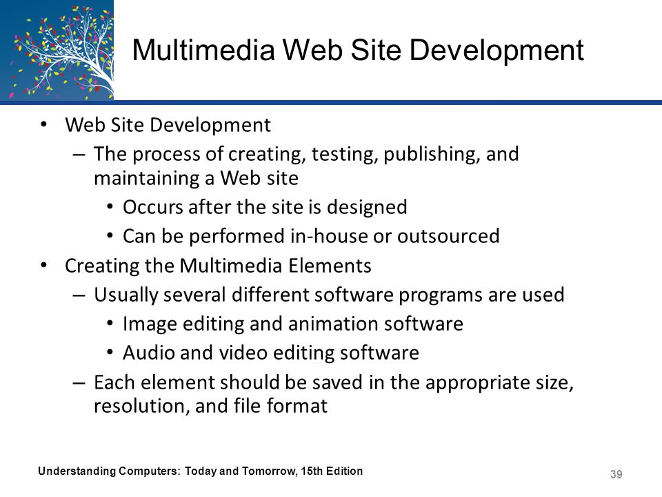 Multimedia Web Site Development Web Site Development – The process of creating, testing, publishing, and maintaining a Web site Occurs after the site