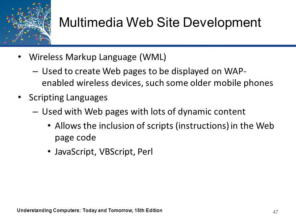 Multimedia Web Site Development Wireless Markup Language (WML) – Used to create Web pages to be displayed on WAP- enabled wireless devices, such some