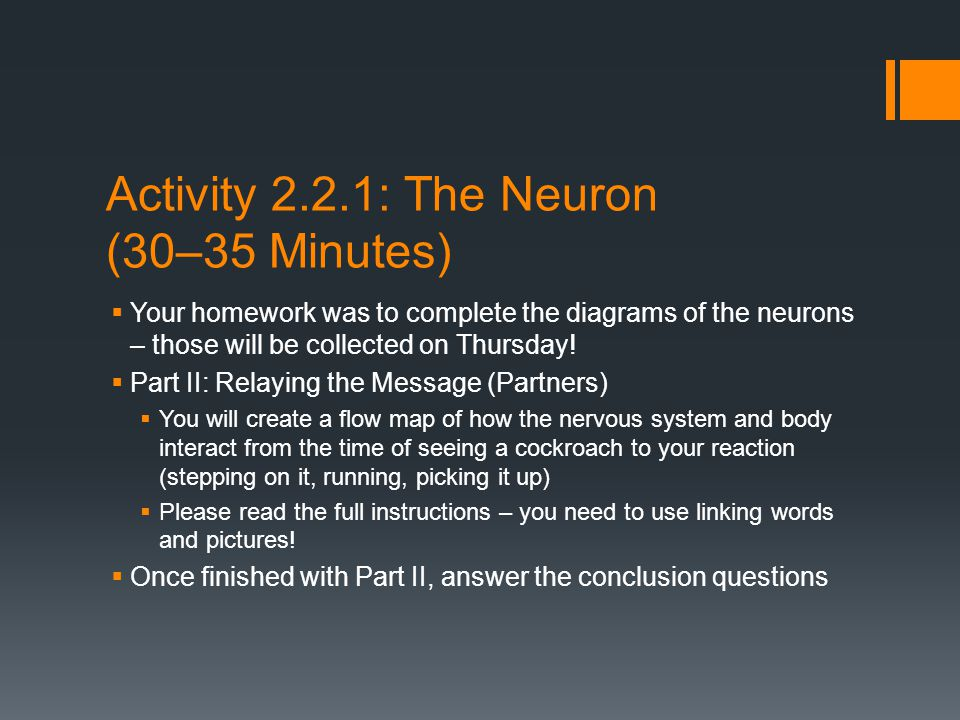 Activity 2.2.1: The Neuron (30–35 Minutes)  Your homework was to complete the diagrams of the neurons – those will be collected on Thursday.
