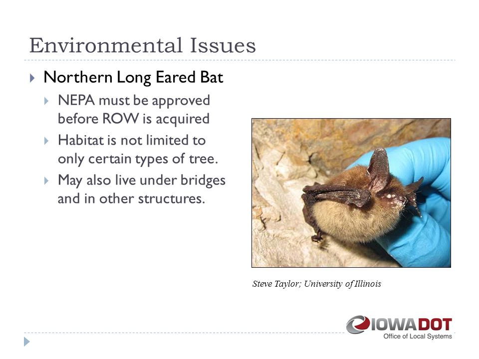  Northern Long Eared Bat  NEPA must be approved before ROW is acquired  Habitat is not limited to only certain types of tree.