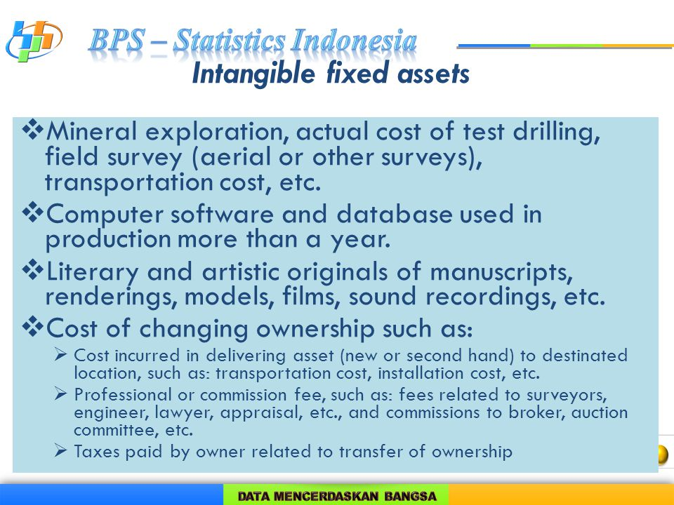Intangible fixed assets  Mineral exploration, actual cost of test drilling, field survey (aerial or other surveys), transportation cost, etc.
