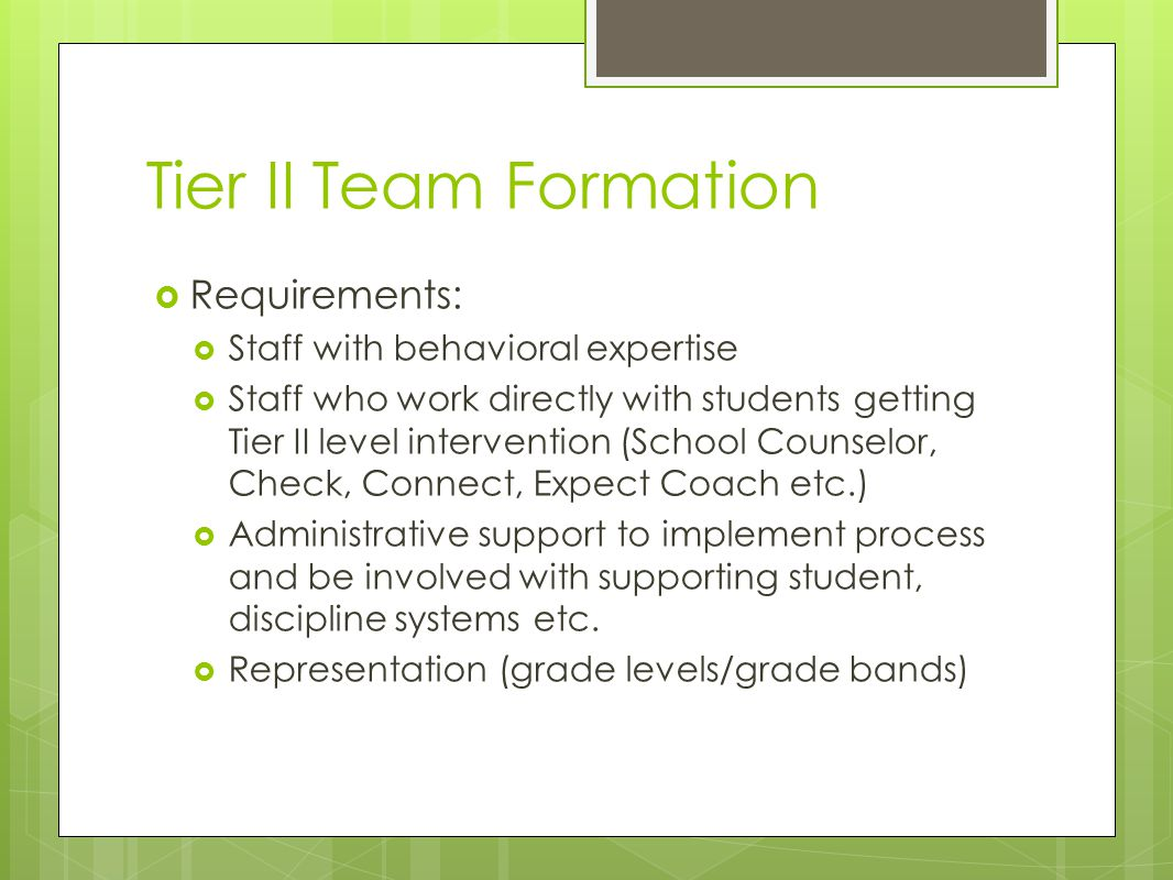 Tier II Team Formation  Requirements:  Staff with behavioral expertise  Staff who work directly with students getting Tier II level intervention (School Counselor, Check, Connect, Expect Coach etc.)  Administrative support to implement process and be involved with supporting student, discipline systems etc.