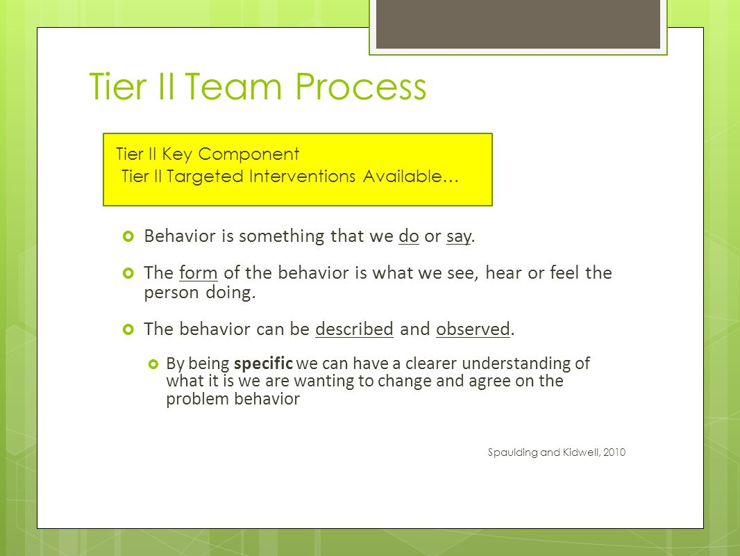 Tier II Team Process Tier II Key Component Tier II Targeted Interventions Available…  Behavior is something that we do or say.