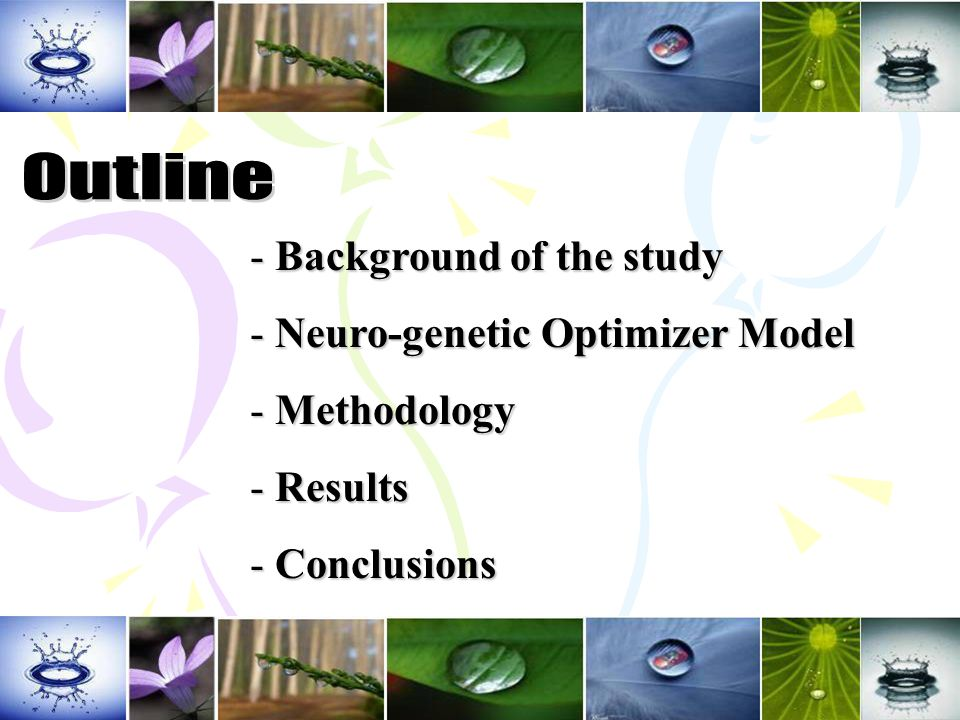 - Background of the study - Neuro-genetic Optimizer Model - Methodology - Results - Conclusions