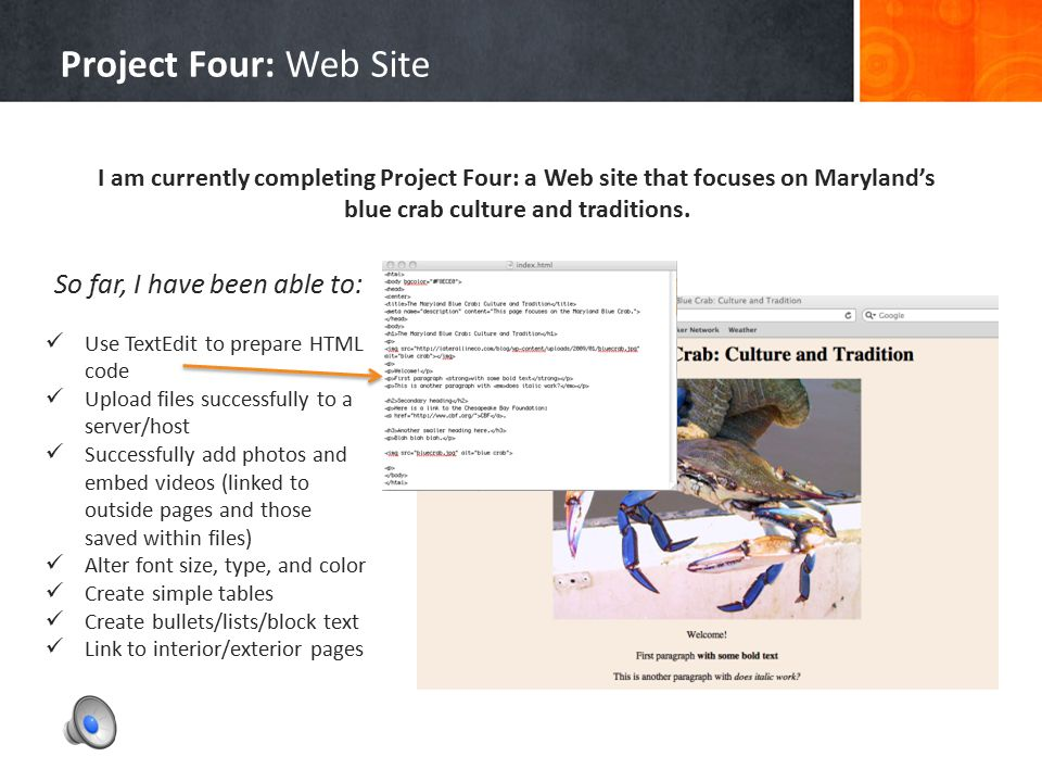 Project Four: Web Site HTML Coding, File Uploading, and Site Management 4