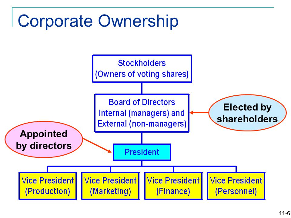 11-6 Elected by shareholders Appointed by directors Corporate Ownership