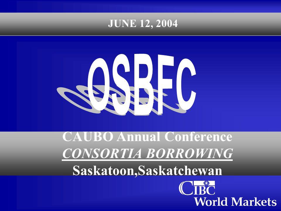 CAUBO Annual Conference CONSORTIA BORROWING Saskatoon,Saskatchewan JUNE 12, 2004