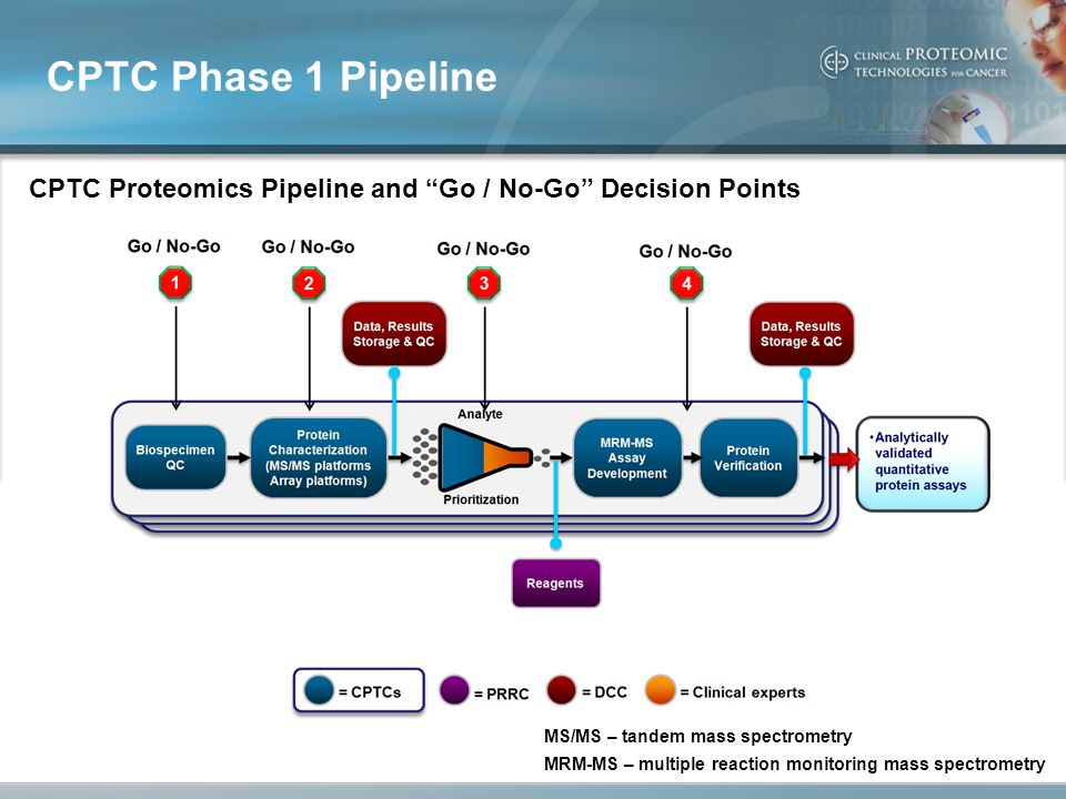CPTC Proteomics Pipeline and Go / No-Go Decision Points CPTC Phase 1 Pipeline MS/MS – tandem mass spectrometry MRM-MS – multiple reaction monitoring mass spectrometry