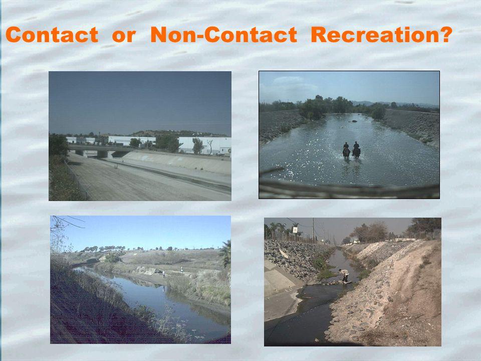Contact or Non-Contact Recreation