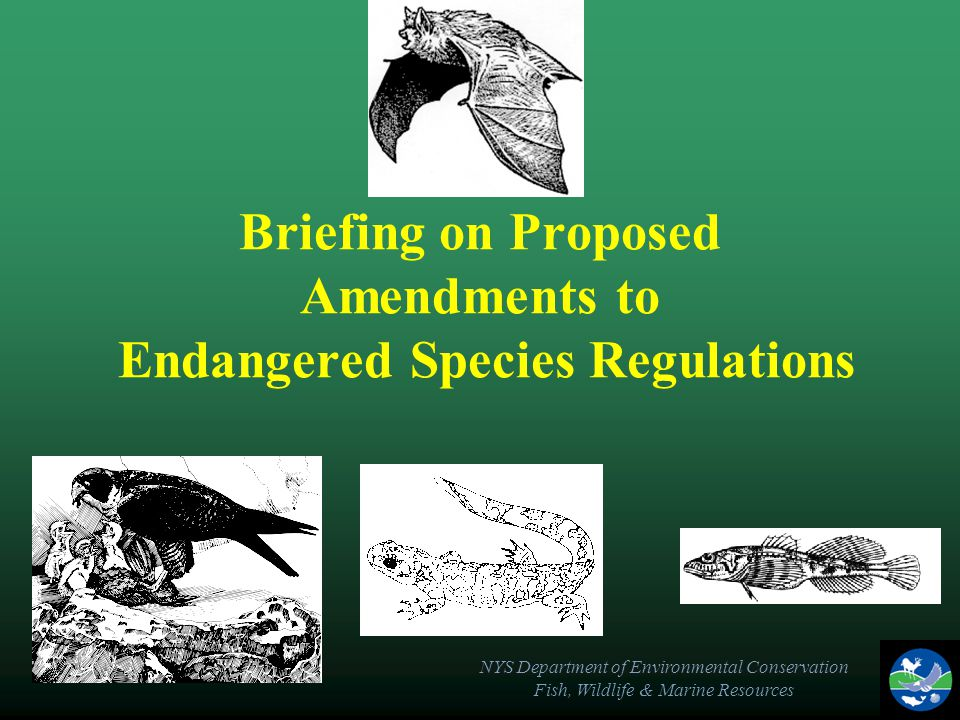 NYS Department of Environmental Conservation Fish, Wildlife & Marine Resources Briefing on Proposed Amendments to Endangered Species Regulations