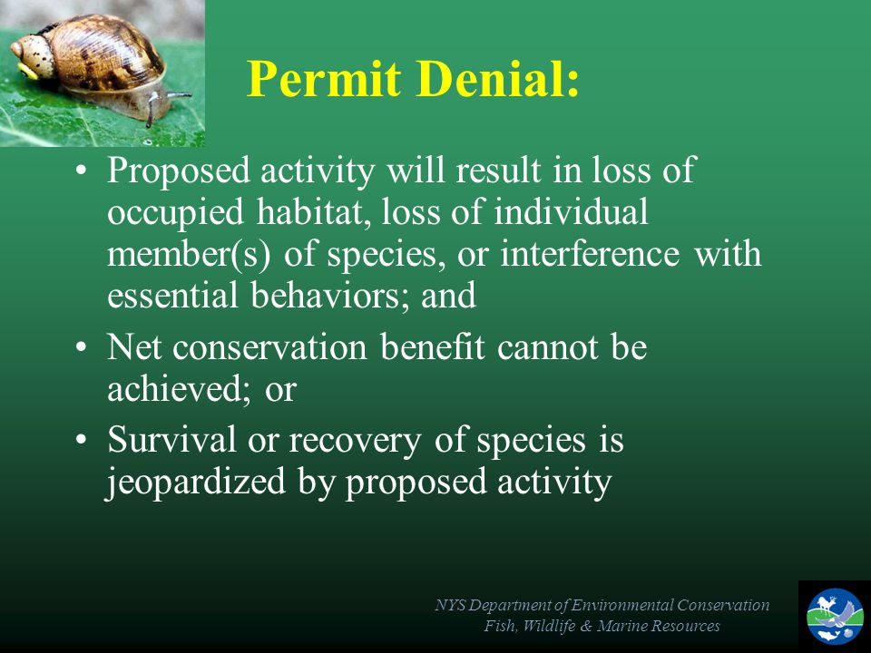 NYS Department of Environmental Conservation Fish, Wildlife & Marine Resources Permit Denial: Proposed activity will result in loss of occupied habitat, loss of individual member(s) of species, or interference with essential behaviors; and Net conservation benefit cannot be achieved; or Survival or recovery of species is jeopardized by proposed activity