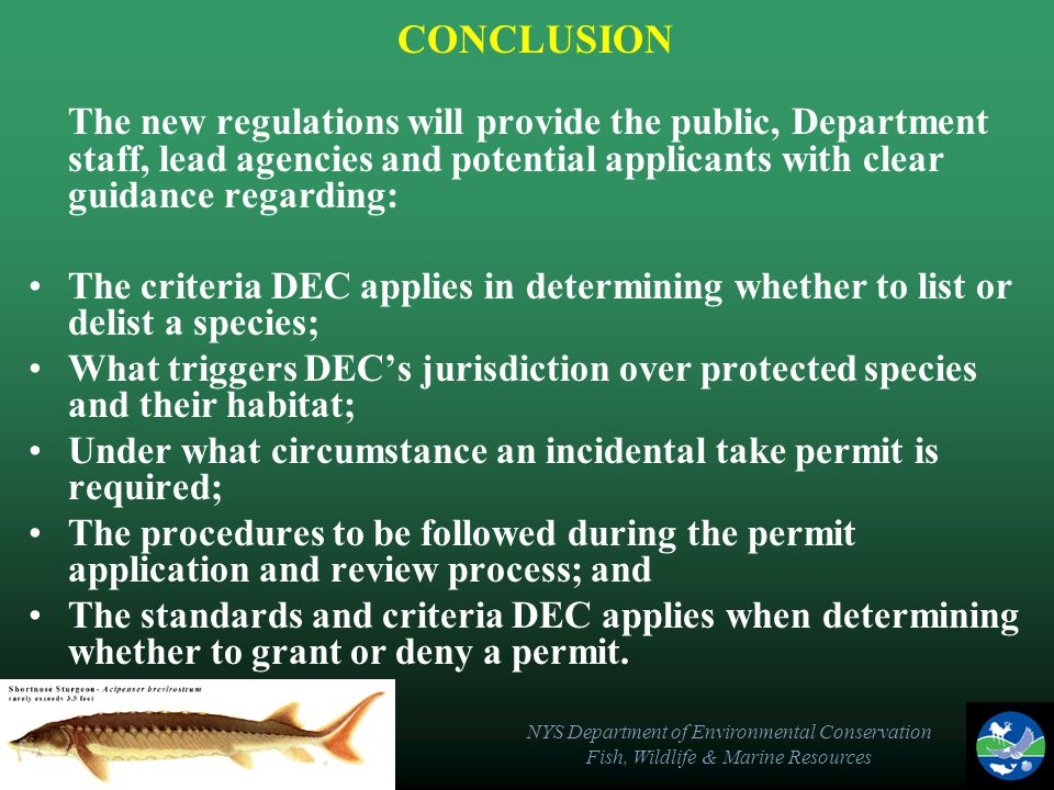 NYS Department of Environmental Conservation Fish, Wildlife & Marine Resources CONCLUSION The new regulations will provide the public, Department staf
