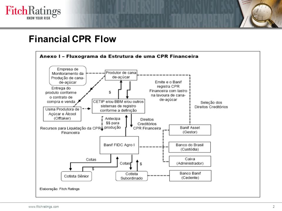 www.fitchratings.com2 Financial CPR Flow