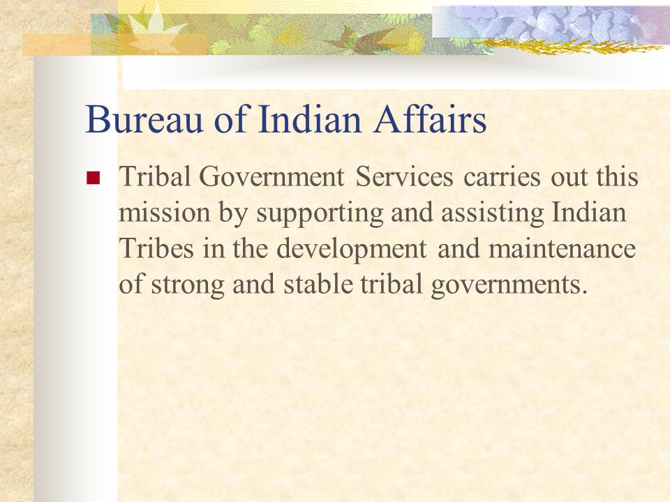 Bureau of Indian Affairs What services Tribal Operations provides Drafting organic documents Informal Reviews Formal Reviews Secretarial Elections Issuance of Section 17 Corporate Charters Assisting in resolving membership concerns Provide knowledge on constitutions, resolutions, ordinances, and charters