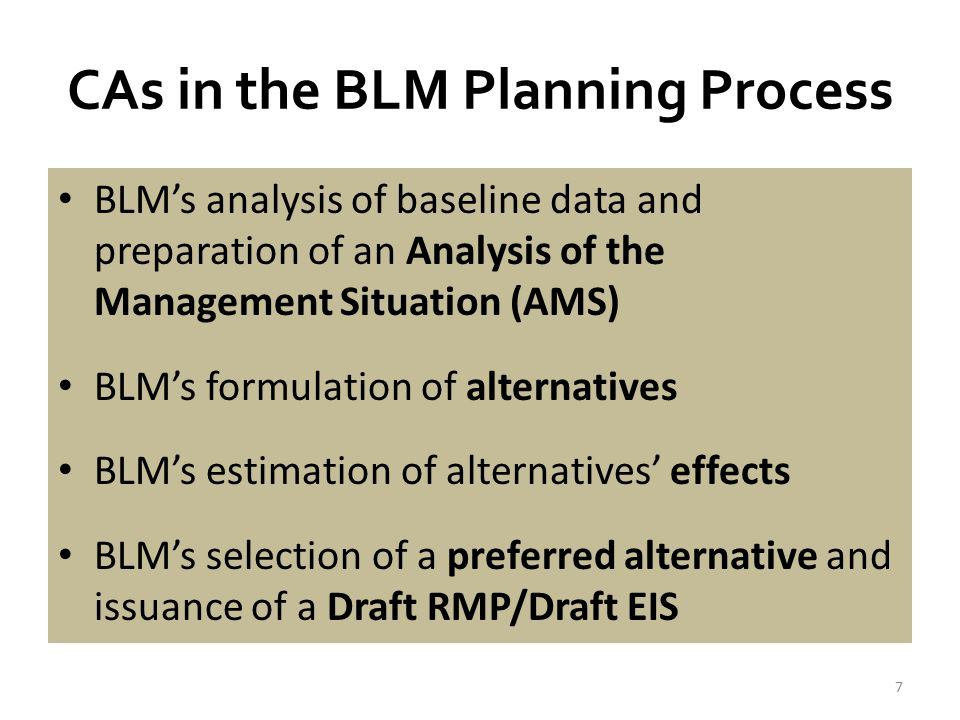 CAs in the BLM Planning Process BLM's response to public comments and issuance of the Proposed RMP/Final EIS -60-day Governor's Consistency Review -30-day Protest Period BLM's response to protests and ROD signature Implementation and monitoring of the Final RMP 8
