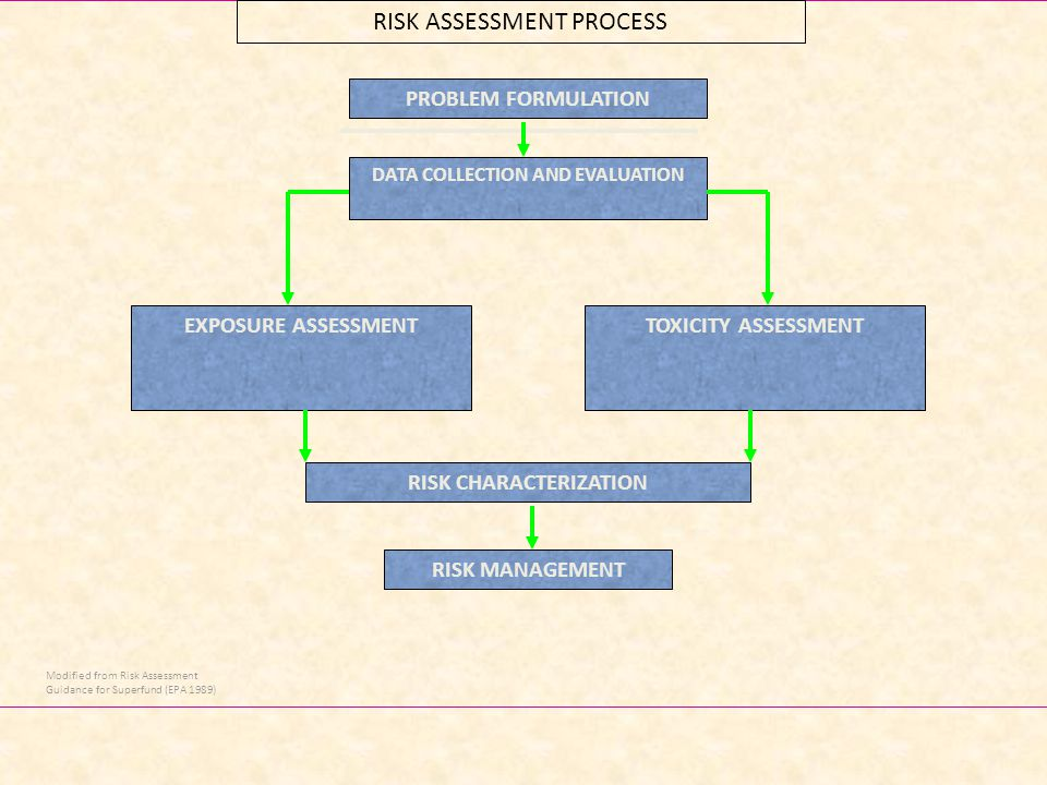 16 RISK ASSESSMENT PROCESS DATA COLLECTION AND EVALUATION TOXICITY ASSESSMENT RISK CHARACTERIZATION EXPOSURE ASSESSMENT RISK MANAGEMENT Modified from Risk Assessment Guidance for Superfund (EPA 1989) PROBLEM FORMULATION