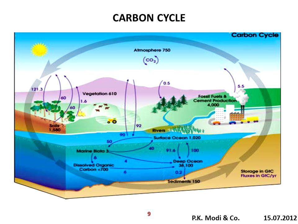 CARBON CYCLE P.K. Modi & Co. 15.07.2012 9